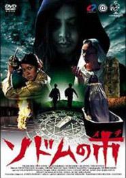 sdm-dvd.jpg